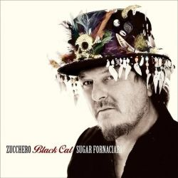 ZUCHERO - BLACK CAT - SPANISH [CD]